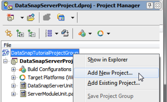DataSnapTutorialProjectGroup